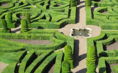 3 lieux nature à découvrir à proximité d'Orléans