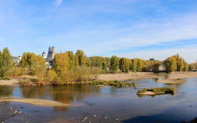 3 activités originales pour (re)découvrir la Loire